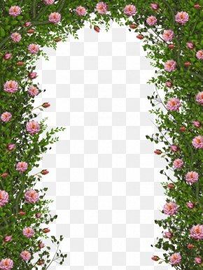 Green Vines Door - Rose Vine Flower Plant PNG