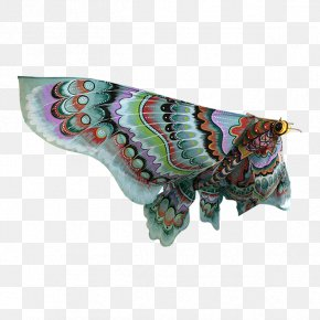Hand-painted Butterfly - Butterfly Insect Pollinator Moth Invertebrate PNG