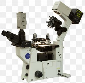 Optical Microscope - Scanning Tunneling Microscope Scanning Probe Microscopy Atomic Force Microscopy Optical Microscope PNG