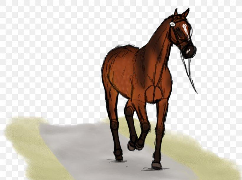 Mane Mustang Foal Stallion Colt, PNG, 1160x865px, Mane, Bit, Bridle, Colt, Foal Download Free
