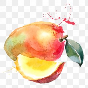 Accesories Watercolor - Juice Smoothie Mango Watercolor Painting Drawing PNG