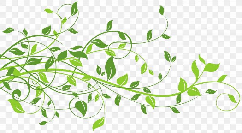 Leaf Clip Art, PNG, 9508x5221px, Leaf, Autumn Leaf Color, Branch, Color, Flora Download Free