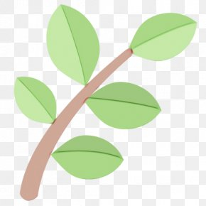 Plant Stem Branch - Leaf Green Plant Flower Tree PNG