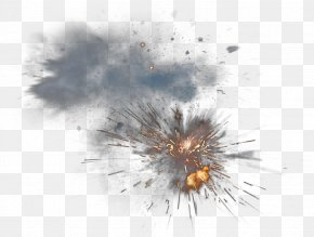 Explosion - Insect Close-up Sky Pest Wallpaper PNG