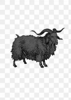 Goat - Sheep Goat Milk Center For PostNatural History BioSteel PNG