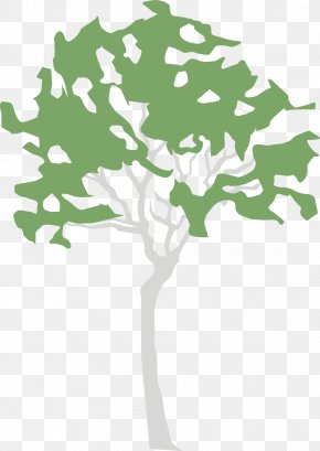 Leaf - Clip Art Illustration Green Leaf Plant Stem PNG