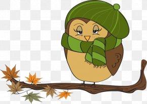 Fall Festival Clipart - Owl Autumn Free Content Clip Art PNG