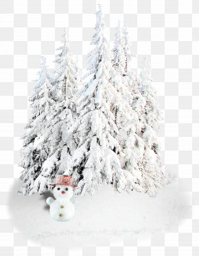 Snow - New Year Christmas Holiday Snegurochka Ded Moroz PNG