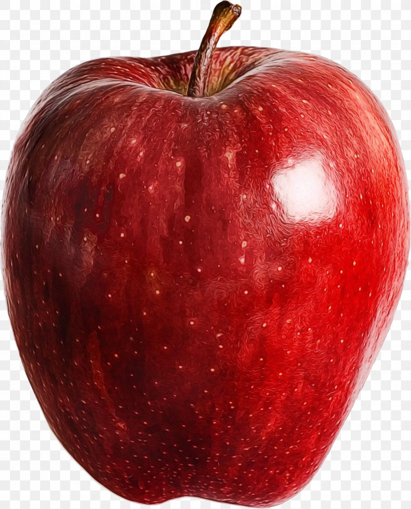Apple Cartoon, PNG, 1717x2131px, Apple, Accessory Fruit, Boulder County, Closeup, Food Download Free