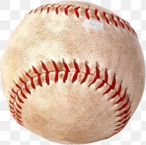 Baseball PNG - United Shore Professional Baseball League MLB FIU Panthers Men's Baseball PNG