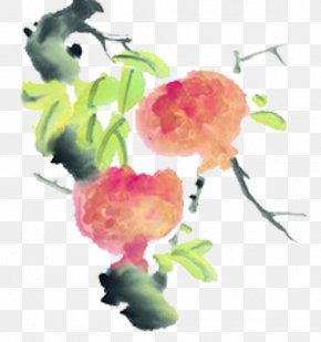Tree Pomegranate Ink Painting - Pomegranate Ink Wash Painting Tree Fruit PNG