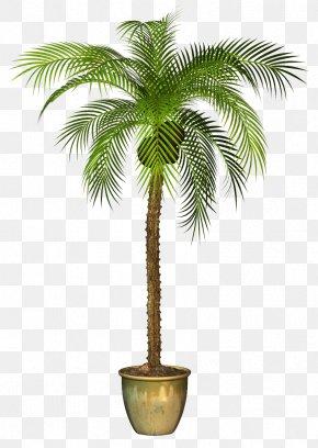 Tree - Areca Palm Tree Clip Art Image PNG