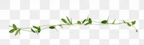 Garland Design - Twig Grasses Plant Stem Leaf Line Art PNG
