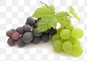 Grape File - Juice Common Grape Vine PNG