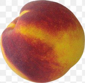 Peach Image - Peach Clip Art PNG