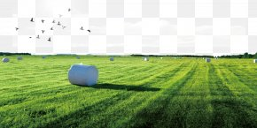 A Farm - Download Poster Arable Land Icon PNG