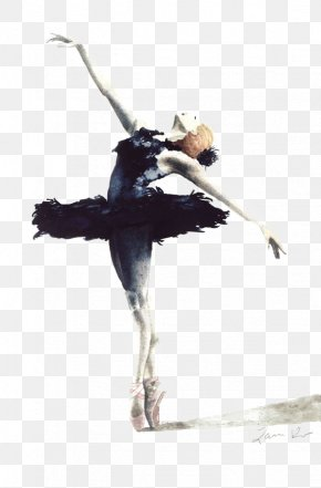 Ballet - Ballet Dancer Swan Lake Cygnini Drawing PNG