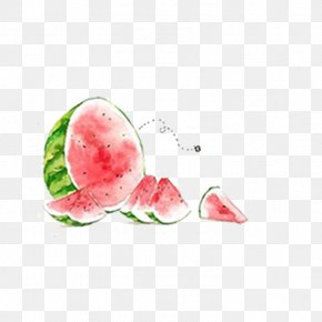 Watermelon,Gouache - Watermelon Watercolor Painting Summer Illustration PNG