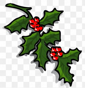 Holly Image - Common Holly Borders And Frames Christmas Clip Art PNG