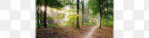 Educational Trail Hiking Appalachian National Scenic Trail Trail Running PNG