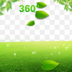 Green Leaves, Trees, Grass, Green Background - Shorts Leggings Tmall Taobao PNG