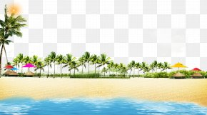 Summer Beach Coconut Grove Play Background - Beach Coast Poster PNG