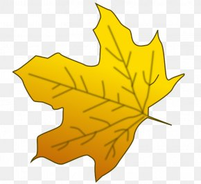 Maple Leaf Art - Sugar Maple Red Maple Maple Leaf Yellow Clip Art PNG