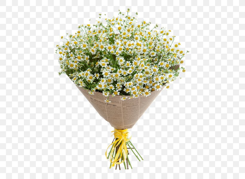 Cut Flowers Flower Bouquet German Chamomile, PNG, 570x600px ... on