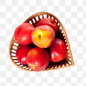 Red Apple On A Basket - Stock Photography Royalty-free Clip Art PNG