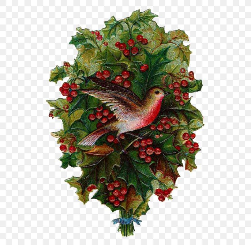 Christmas Day Clip Art Christmas Christmas Tree A Christmas Carol Santa Claus, PNG, 573x800px, Christmas Day, Birthday, Christmas Carol, Christmas Decoration, Christmas Ornament Download Free