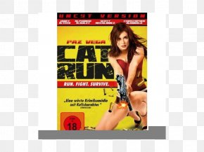 Cat - Cat DVD Blu-ray Disc Film Director PNG