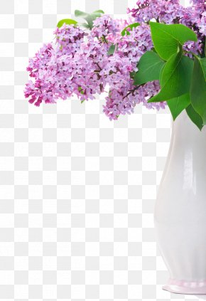 Lilac - Flower Lilac Purple Stock Photography PNG