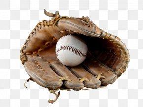 Baseball Glove - Baseball Glove Catcher PNG