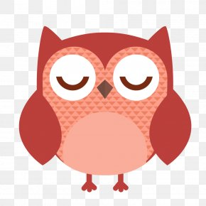 Sleeping Owl - Owl Vector Graphics Clip Art Stock.xchng Illustration PNG