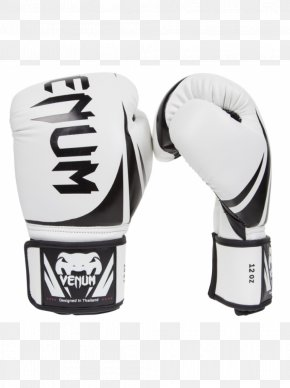 Boxing Gloves - Boxing Glove Venum Mixed Martial Arts PNG