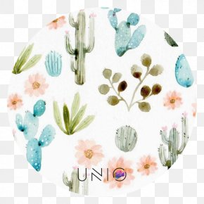 Painting - Cactaceae Watercolor Painting Succulent Plant Printmaking PNG