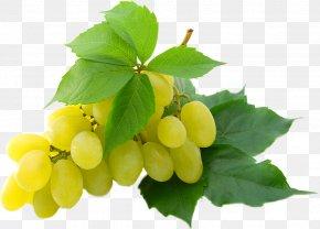 Grapes - Grape Desktop Wallpaper High-definition Video 1080p Display Resolution PNG