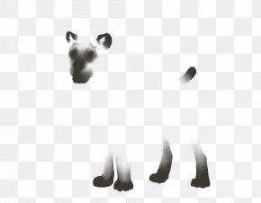 Lion - Lion Tiger Mammal Cat Agility PNG