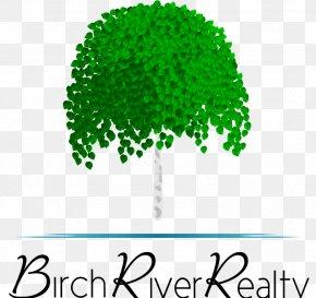 Tree - Birch River Realty Birch River Drive Achasta Tree River Birch PNG