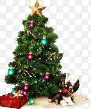 Santa Claus - Santa Claus Christmas Tree New Year Tree Christmas Day PNG