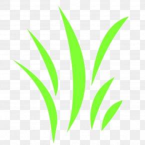 Green Grass - Leaf Grasses Plant Stem Font PNG