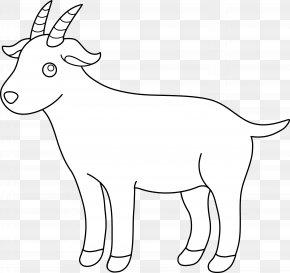 Renewal Cliparts - Boer Goat Black Bengal Goat Pygmy Goat Sheep Clip Art PNG