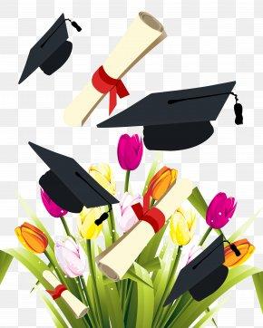 Graduation Season Element - Graduation Ceremony Square Academic Cap Diploma Clip Art PNG