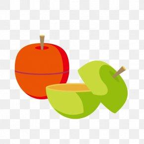 Cartoon Cut Apple - Apple Cartoon Clip Art PNG