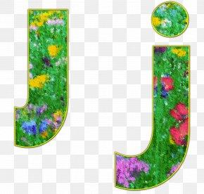 Letter Case Alphabet Font - Alphabet Letter Library Font PNG