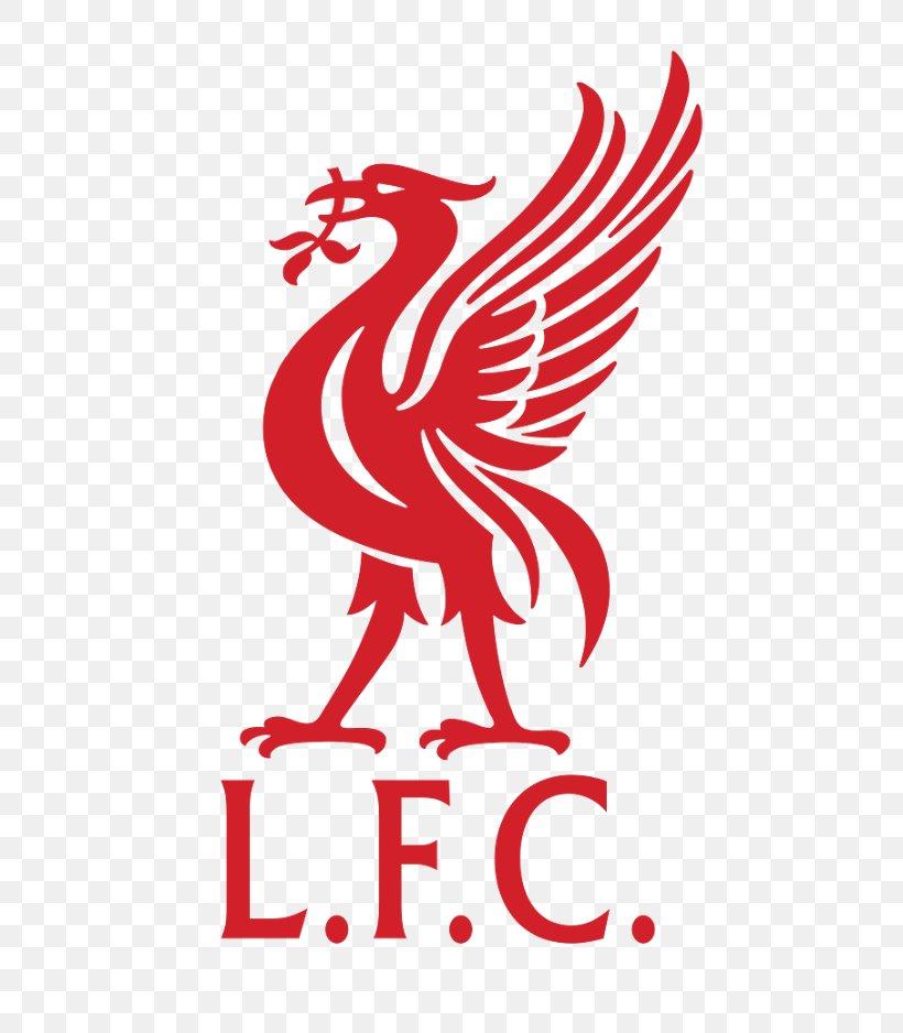 liverpool f c anfield liverpool l f c football everton f c png 527x938px liverpool fc anfield area art artwork liverpool f c anfield liverpool l f c