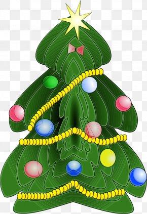 Interior Design Evergreen - Christmas Tree PNG
