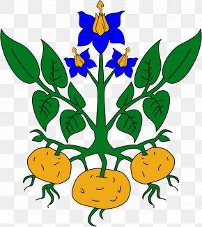 Science Flower Cliparts - Sweet Potato Tomato Plant Clip Art PNG