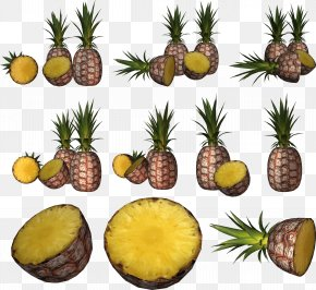Pineapple Image Download - Image File Formats Lossless Compression Raster Graphics PNG