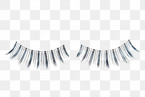 Black False Eyelashes - Eyelash Extensions Stock Photography PNG